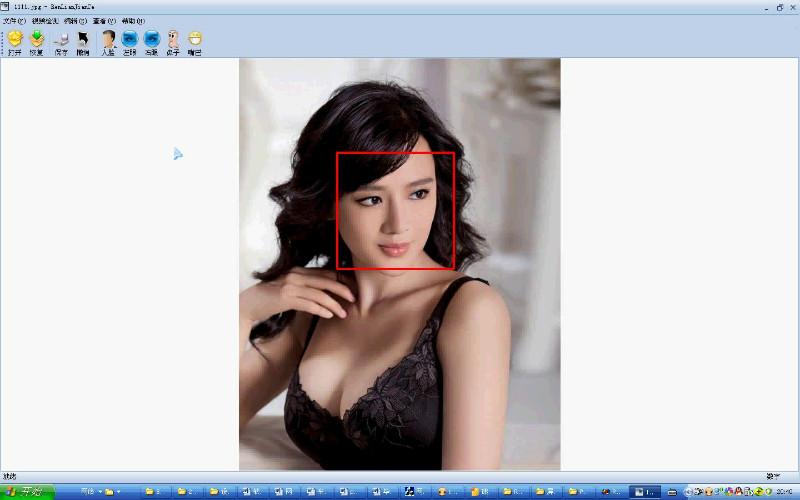 毕业论文课程设计源码实例-vc++_018人脸识别人脸检测截图